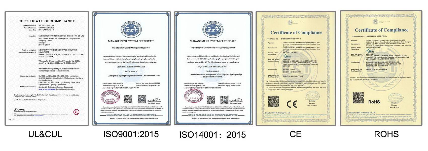 certificado-de-Rayoshow